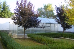 üvegház 2